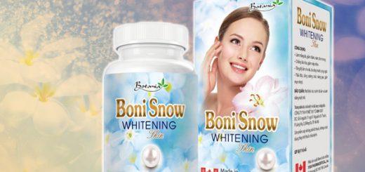 Bonisnow