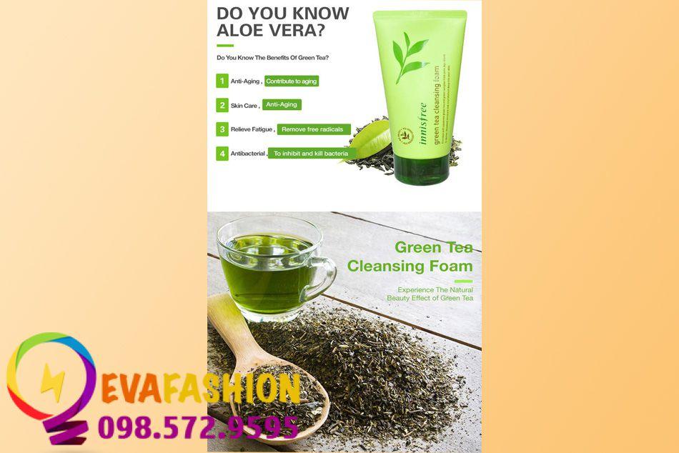 HÌnh ảnh về thành phần của sữa rửa mặt Innisfree Green Tea Cleansing Froam