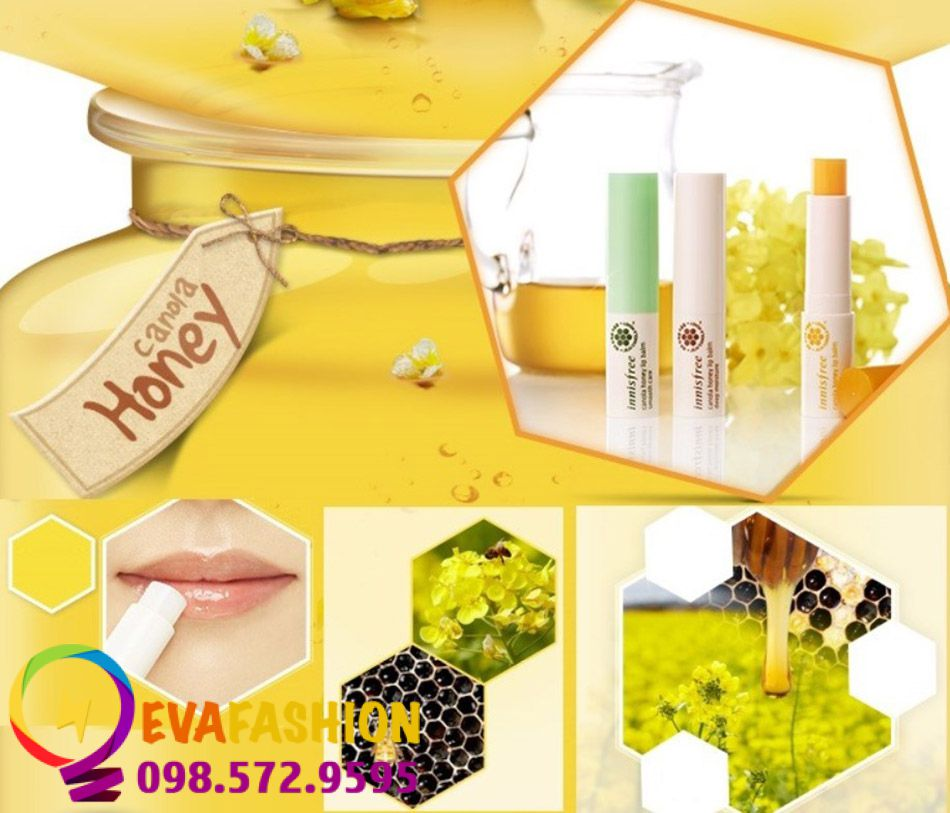 Hình ảnh son Innisfree Canola Honey Lip Balm