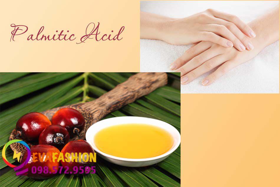 Thành phần Palmitic Acid trong dầu cọ và ở lớp sừng trên bề mặt da