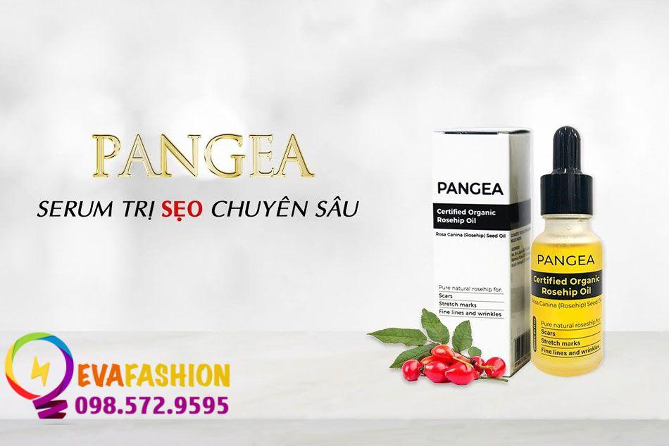 Serum trị sẹo chuyên sâu - Pangea